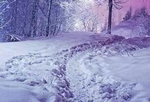 SNOWY WINTER! / PRETTY SNOW PICTURES! I love snow! Living in the south we don't get much snow, so I truly enjoy the snowy scenery. 'Snow falling soundlessly in the middle of the night will always fill my heart with sweet clarity'