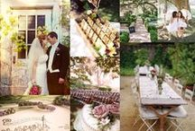 Weddings in Lake County / by Visit Lake County Illinois