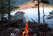 camping nonsense. / by Kaley Buttars