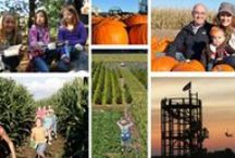 Fall in Lake County, IL / by Visit Lake County Illinois