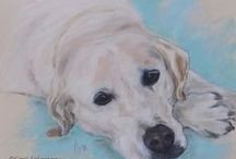 Commissioned Artwork / Commissioned Pet Portraits by Cori Solomon