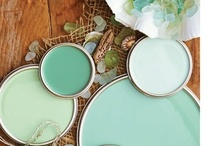 Cool Color Combos / by Amy Mallory