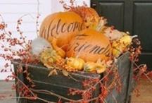 Fall decorations / by Sher Pratt