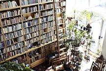 a bookworm's paradise