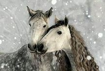 ".love ponies. / ""The wind of heaven is that which blows between a horses ears."" Arabian Proverb."