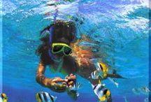 Island Water Adventures