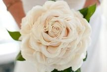 Pretty Little Flowers // Wedding Bouquets / Beautiful Wedding Bouquets for brides and bridesmaids  / by The Overwhelmed Bride