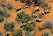 Stunning Air Scenes of Africa / Africa is a source of amazing bio-diversity and home to some of the planet's most spectacular landscapes.