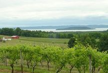 Wonderful Wineries / by Leigh Bardell