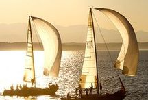 sail away / Boats and Sailboats, sailing on the oceans around the world