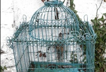 birdhouse beauts!
