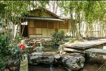 Des oasis vertes dans Paris / Pour en savoir plus >> http://bit.ly/10VSc14