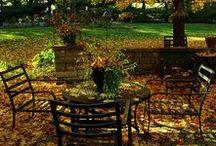 Autumn / Season of my birth...