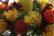 Floral Arrangements / These arrangements are created using the Floral Arranger Glass Vase Design System.  http://www.shopdepalma.com