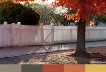 Colors of Fall / by Colonial Williamsburg