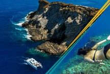 Niihau / See photography of Lehua Rock and Niihau from our daily Kauai boat tours to Niihau and the Napali Coast.