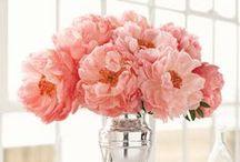 Favorite Pink Things