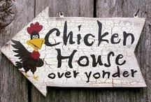 Animals: Chickens / Everything chicken, from breeds of chickens, care and feeding, to chicken houses and even chicken home decor. / by Rhonda Gillette