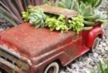 garden containers / by Bonnie Keaveny