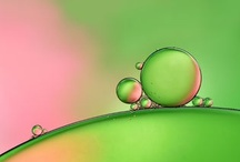 Green & A Pinch Of Pink