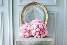 Luxe Love : Peonies / A board of appreciation of Amanda's favourite flower, the peony.