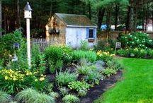 garden wish list / by Susan Bartlett