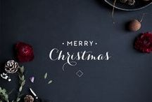 Holidays. / Merry Christmas and Happy New Year. / by Andrea Alley Photography