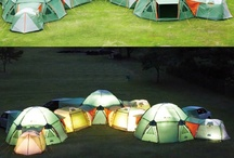 Camping / by Michelle Brin