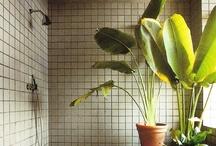 ❊ private garden ❊ / by Vivi Häck