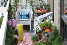 Patio and outdoor space. / by Andrea Alley Photography