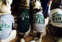 Victory for MSU!