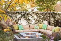 Backyard / by Ana Paula Teeple