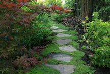 Outdoor Places / Spaces / Beautiful Outdoor settings / by Faith Hopwood