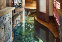Fish in My Floor / Our house in Japan was built over a koi pond, with a 1/3 of the pond under one corner of the house (that edge built on stilts) and 2/3 the focus of an outdoor rock garden! We had a huge, 8 inch thick piece a glass for viewing, right in the middle of the living room floor.