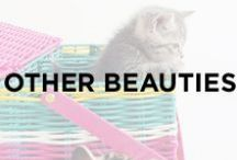 Other Beauties / Kittens, animals, cats, zoo animals, rare animals, flamingos, horses, butterflies, elephants, giraffes, beautiful creatures.