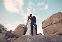 wedding / by Rachael Edson