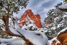 Colorado  / Capital is Denver / by Claudia Shuey