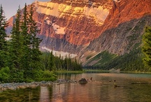 Alberta / Capital is Edmonton / by Claudia Shuey