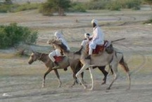 Chad / Capital is N'Djamena / by Claudia Shuey