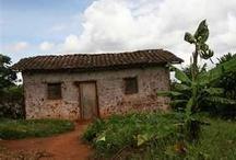 Burundi / Capital is Bujumbura / by Claudia Shuey