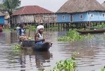 Benin / Capital is Porto-Nova Seat of government is Cotonou / by Claudia Shuey