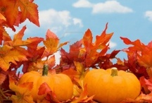 FALL & All things Pumpkin :) / by Michelle McNiel