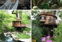 tree houses  / by Robin Clark