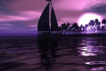 Sailors Delights / by Lou Ann Laughlin