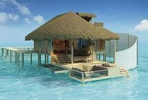 Dream Vacations / by Jo-Anna Regan