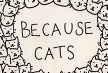 Quotes / by Melissa Meow
