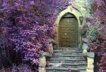 secret garden / by Maren Custer