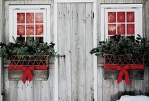 holiday cheer / Holiday  / by Maren Custer