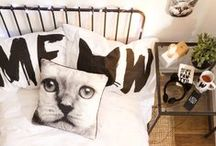 Trend Edit: Purr-fect Gifts / We are not kitten around about this.. we LOVE cats and so will you after you see our cat range online and in store this month. You're home will be looking and feline fine with our cushy cushions, cat head clocks, socks and more. We have the purr-fect gifts for all your crazy cat lady friends so go check it out like right meow. #typoshop #typocats