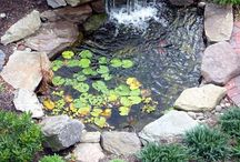 Water features / by shop bluegrass